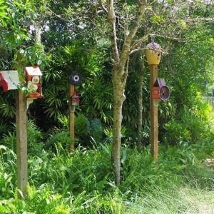Songbird Park