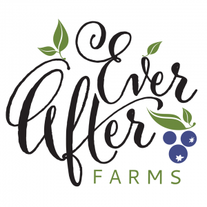 Ever After Farms U-Pick Blueberry Farm